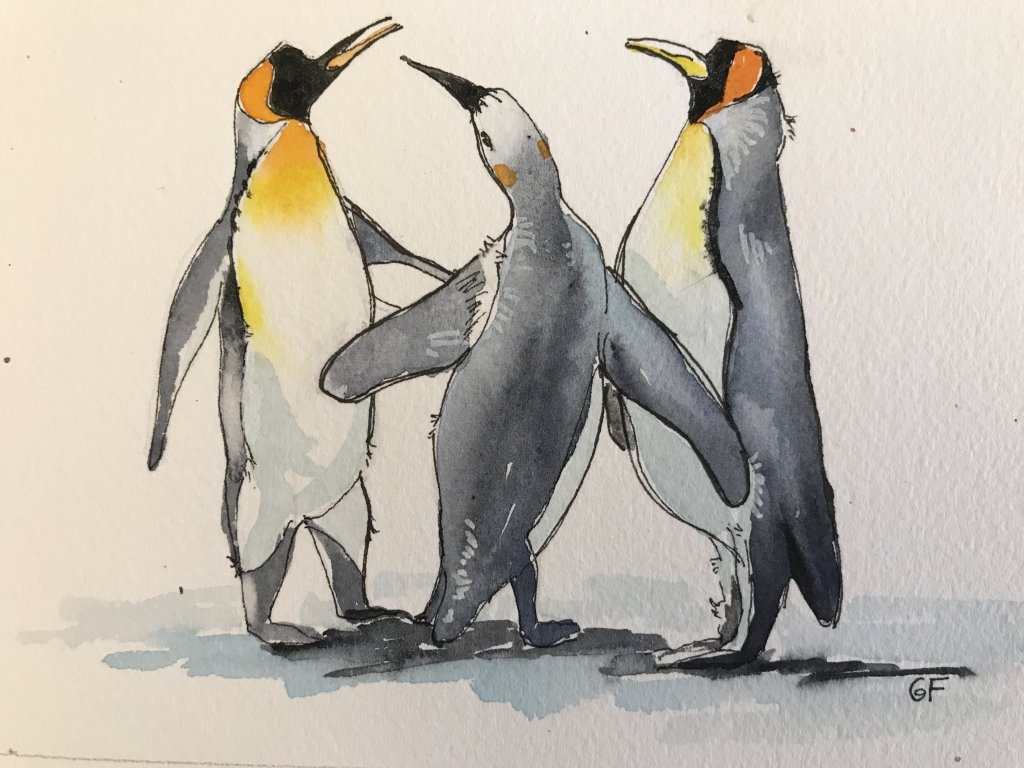 Penguins – November. From photo by Bruce Detorres on Flickr 398EF58C-637D-45CF-ABC8-D3ACDBFC30