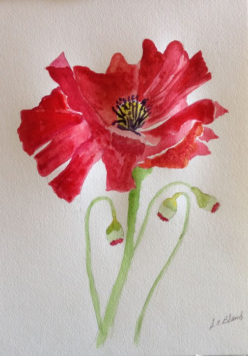 9c Red Flower Watercolor by S E Bland