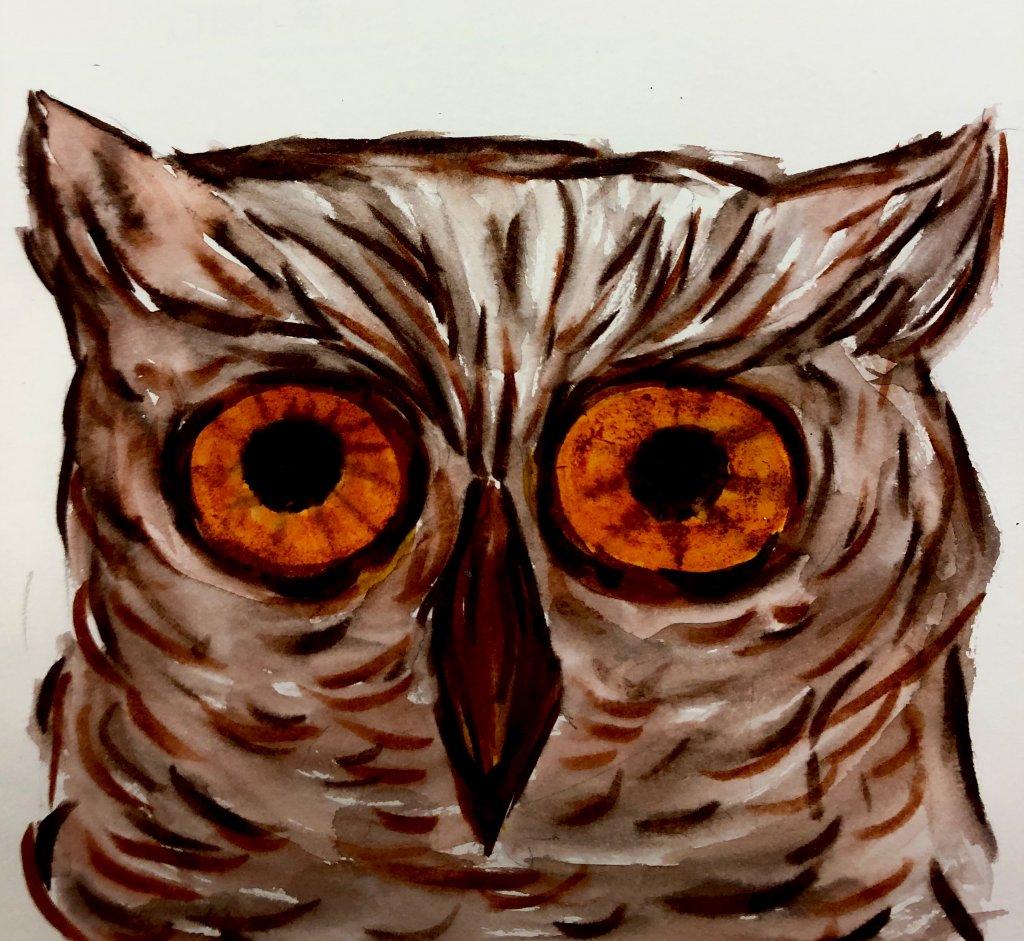 #doodlwashNovember2019 #doodlewashNovember2019FunThingstoDraw Day 8: Owl C8A9FA16-0449-4BEB-82C3-4F6