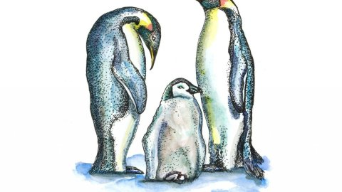 Two Penguins And Baby Watercolor Illustration