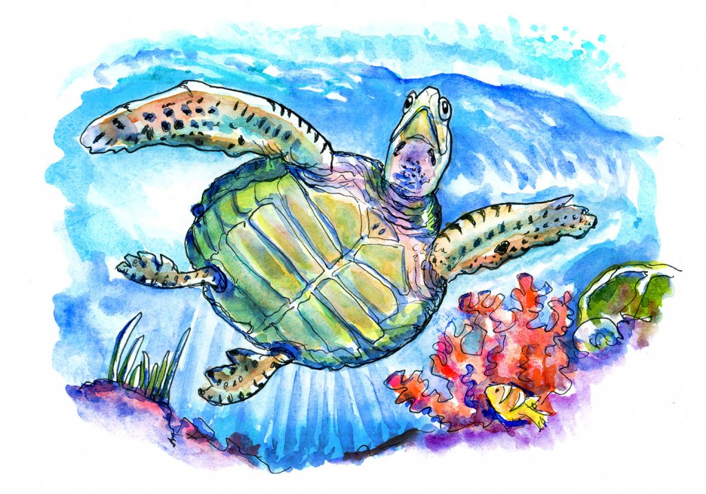 Sea Turtle Underwater Swimming Sky Light Coral Watercolor Painting