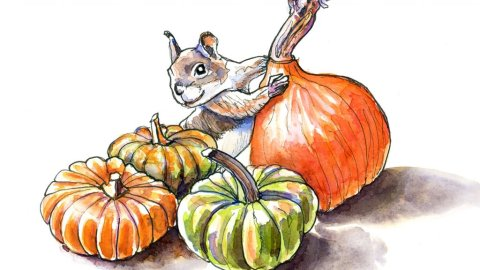 Ornamental Gourds Pumpkins Squirrel Watercolor Illustration