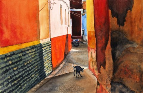 Calle De Perro Watercolor Painting by Renee Galligher