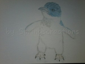 Fairy penguin (little penguin) (about 40 cm or around 15 inches) It has a pretty blue in it too like