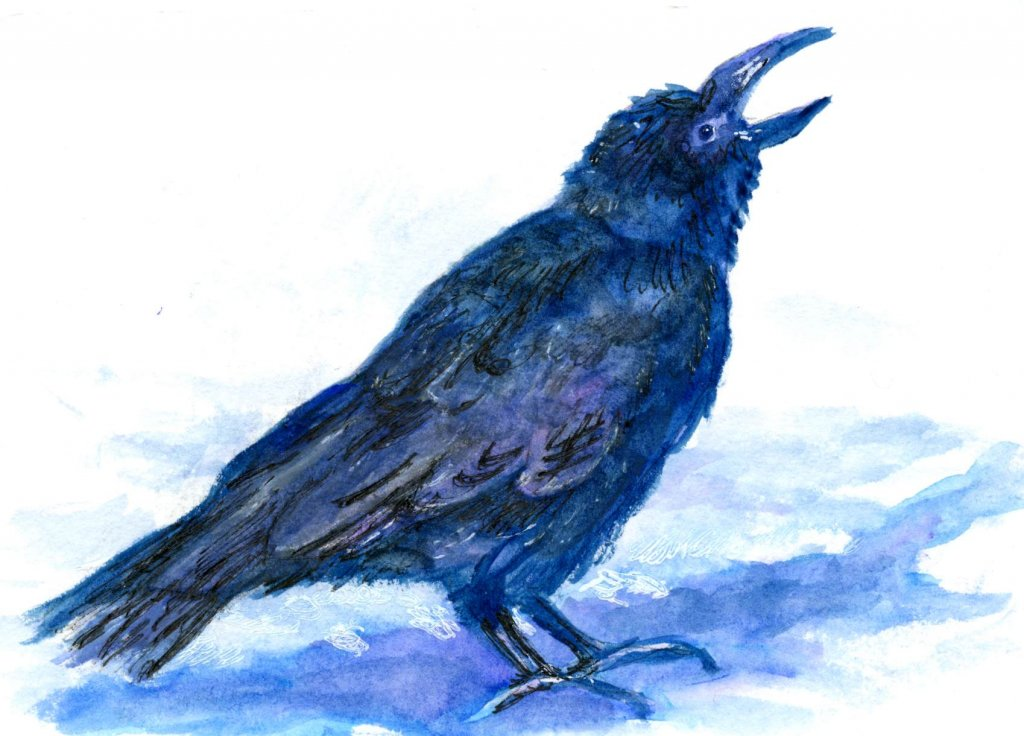 Raven – Miya Arts Gouache & Van Gogh Interference Watercolor over watercolor on Hahnemuhle