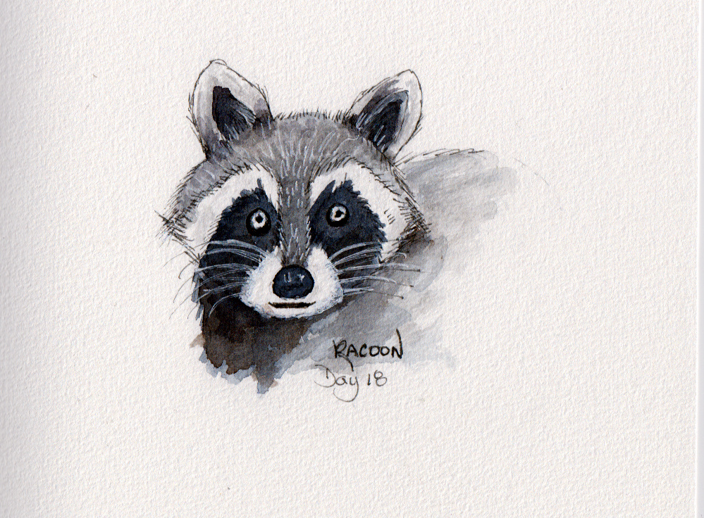 Day 18 – Racoon Scan.BMP-007