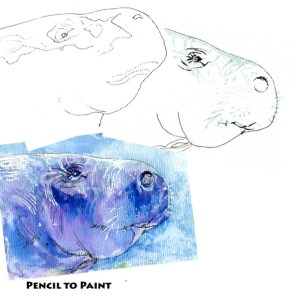 Manatee-Pencil to Paint Tutorial. Zebra Brush & Technical Pen on Hahnemühle Nostalgie Postcard