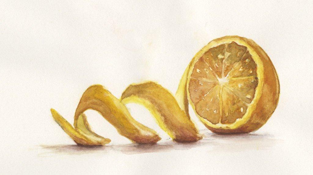 orange peel Watercolor Painting by Lori Nass