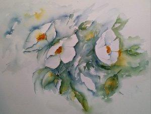 White flowers. 20171101_152147-1