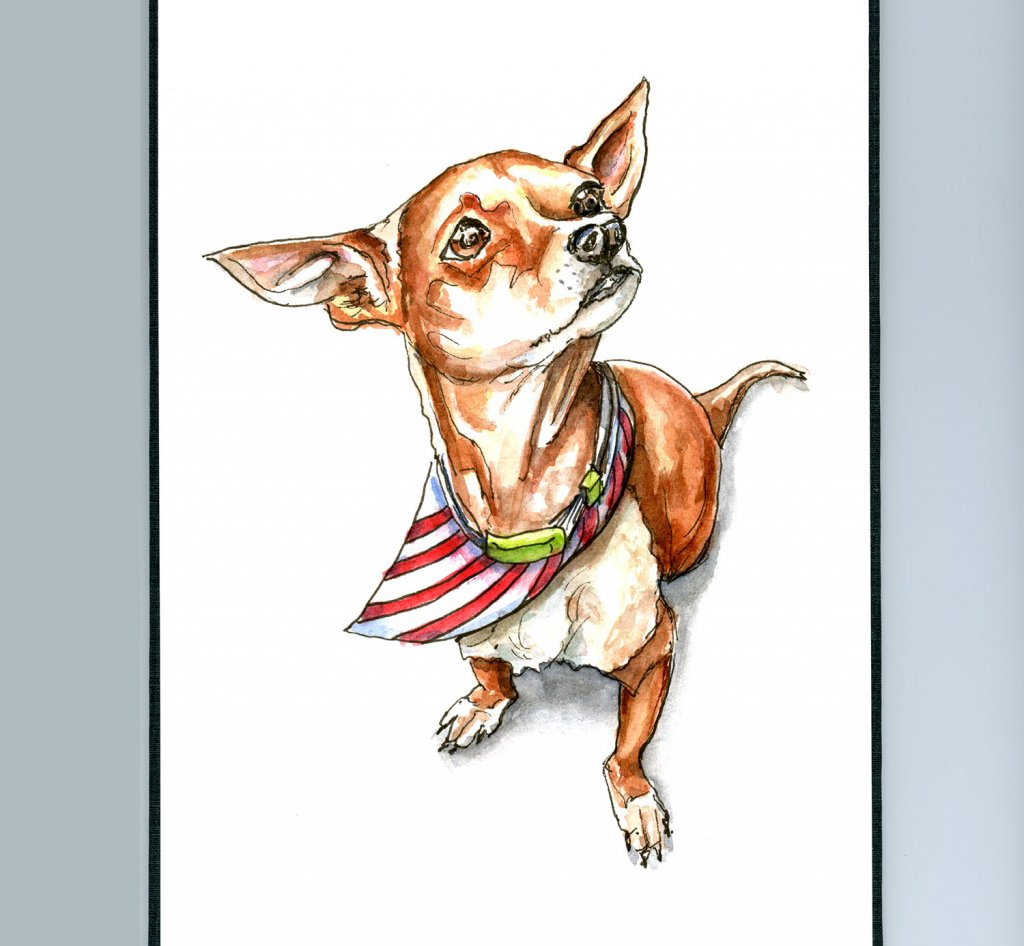 Chihuahua Dog Portrait Watercolor Illustration Sketchbook Detail