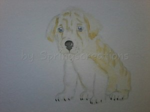 Ba-Shar ( basset hound shar-pei mix) sometimes called walrus due to the cute little wrinkling. Some