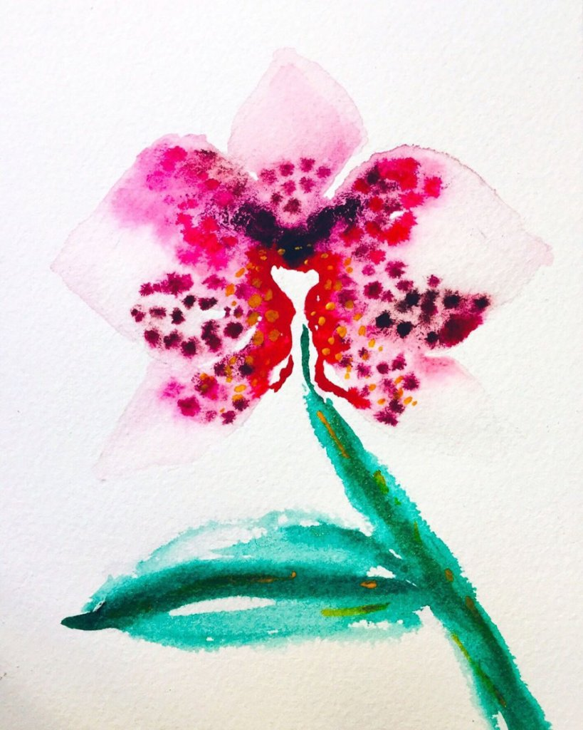 Pink Flower Liquid Watercolors Doc Martins
