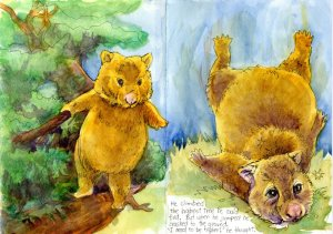 Diggory Wombat Goes Flying Part 3: Zebra Zensation Technical Pen & Watercolor in a Hahnemühle Z