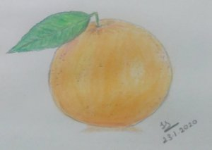 January Art Challenge : Day 23 – Orange #doodlewashJanuary2020 1579790380981-15f9d907-d8e0-4e8