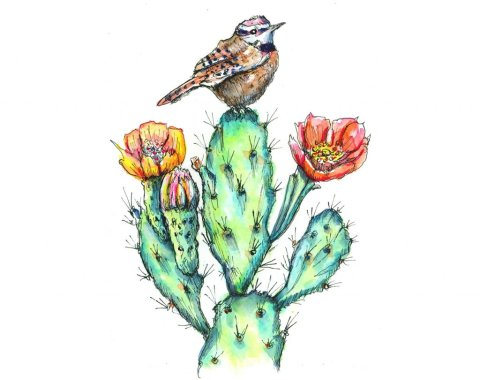 Cactus Wren Flowers Blossoms Watercolor Painting