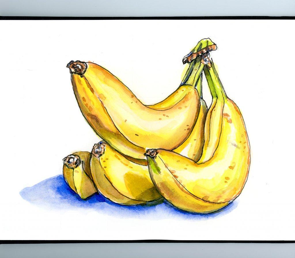Bananas Bunch Watercolor Illustration Sketchbook Detail
