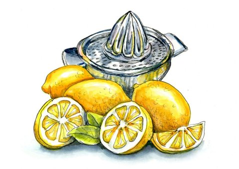 Lemons And Lemon Squeezer Juicer Watercolor Illustration