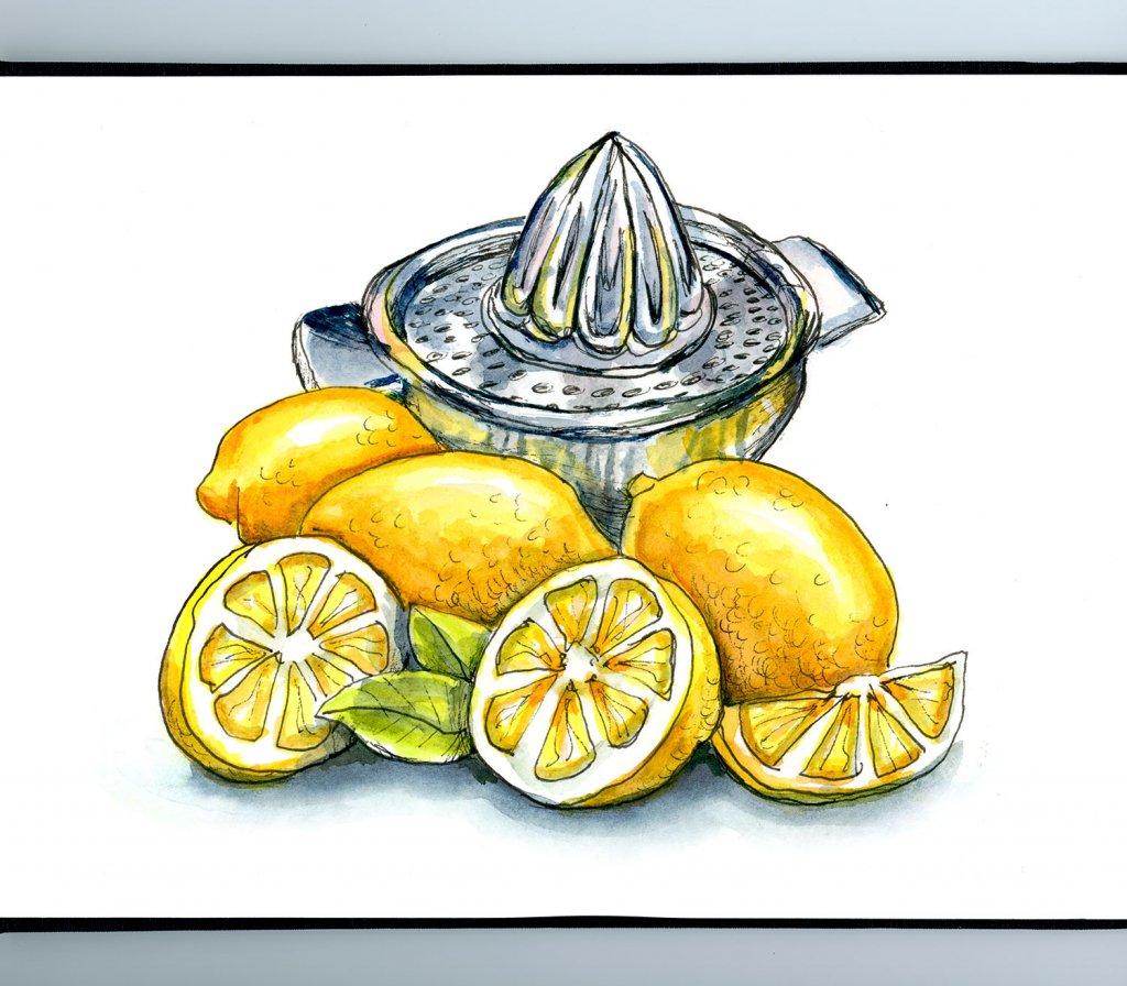 Lemons And Lemon Squeezer Juicer Watercolor Illustration Sketchbook Detail