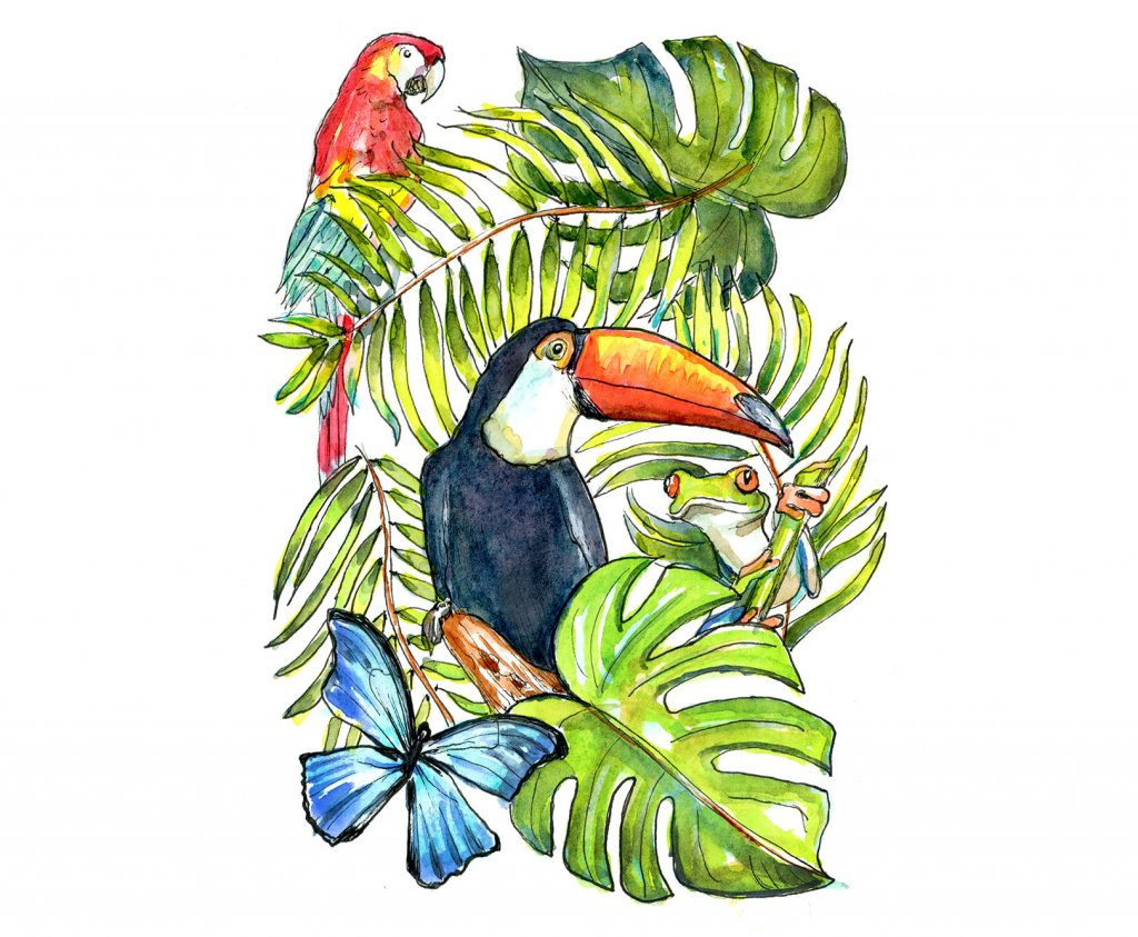 Rainforest Animals Watercolor Illustration