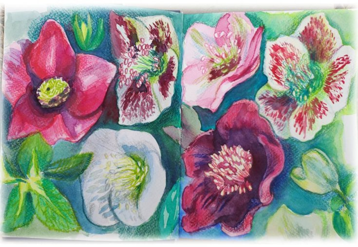 Flowers Watercolor by Tatiana Manukovskaya