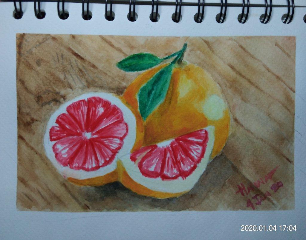 #doodlewashJanuary2020 #WorldWatercolorGroup #Beginner #Day4 #Grapefruit #4Jan2020 IMG_20200104_1704