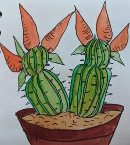 A cactus growing carrots sb71p59