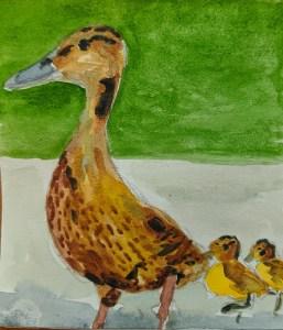 13/1/2020 Ducks sb71p60