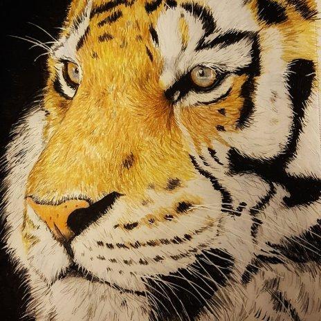 Tiger Watercolor Pencil Painting by Judy Jones