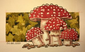 24/02/2020 Mushrooms 195E08E4-0234-4321-A91B-069AD517F1D0