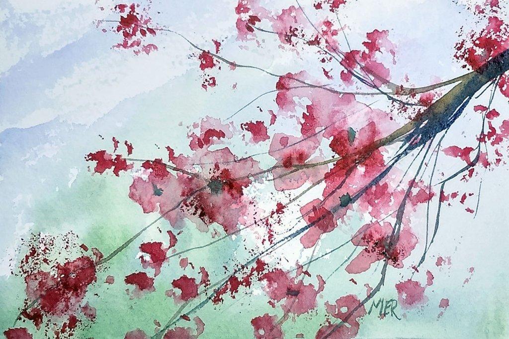 2/13/20 Cherry Blossom 2.13.20 Cherry Blossom img211