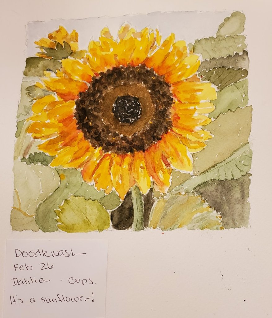 #Doodlewash #Doodlewashed #WorldwatercolorGroup Feb 26 – Dahlia Oops! It's a sunflower,