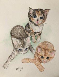 Kittens! 4C2C3DE4-7762-4D57-8341-F56650ABD0BA