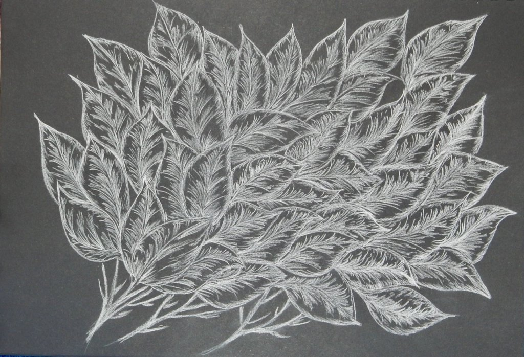 """Another drawing from my imagination and I think I should call it """" Frosted Leaves"""". done"""