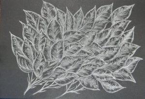 "Another drawing from my imagination and I think I should call it "" Frosted Leaves"". done"