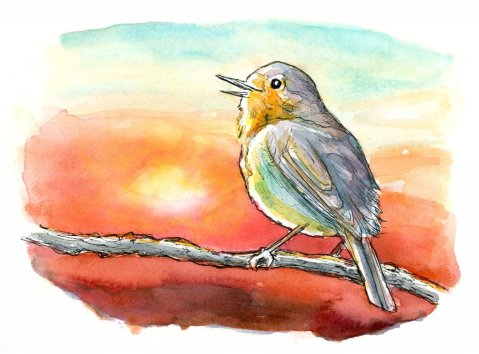 English Robin Bird On Brand Sunset Watercolor Painting