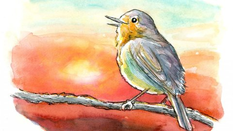 English Robin Bird On Brand Sunset Watercolor Painting