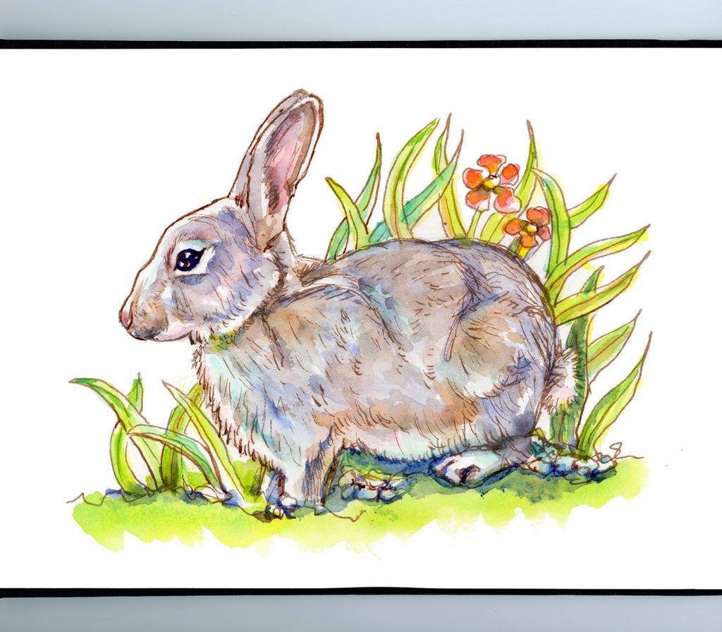 Bunny Rabbit In Grass Flowers Watercolor Painting Sketchbook Detail