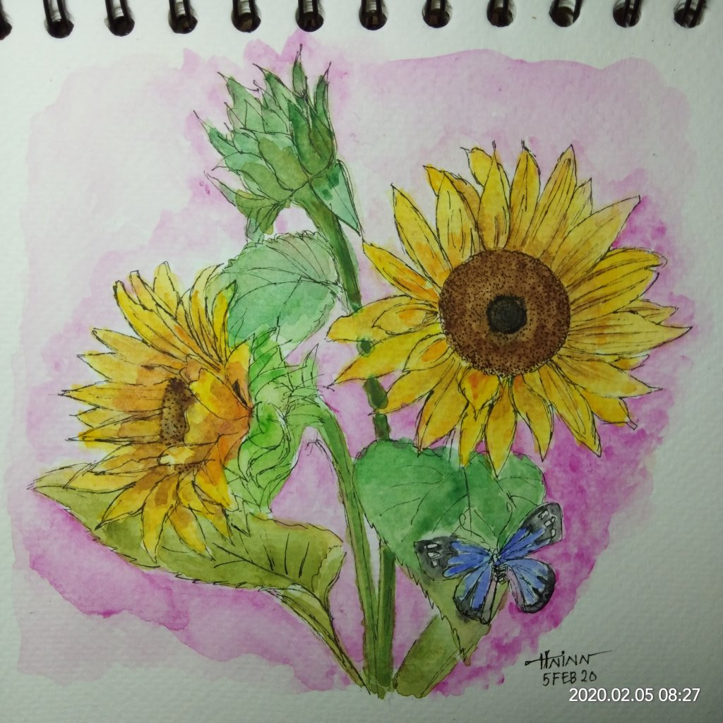 #doodlewashFebruary2020 #WorldWatercolorGroup #Beginner #Day5 #Sunflowers #5Feb2020 IMG_20200205_082
