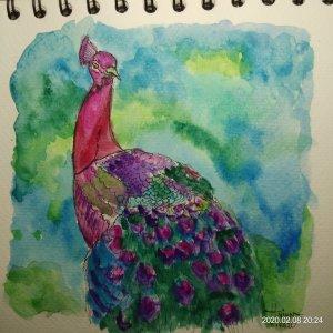 #doodlewashFebruary2020 #WorldWatercolorGroup #Beginner #8 #Peacock #8Feb2020 IMG_20200208_202449