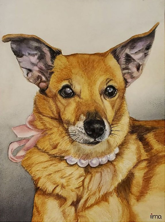 Pet Portrait Dog Watercolor Painting by Nereida Lima
