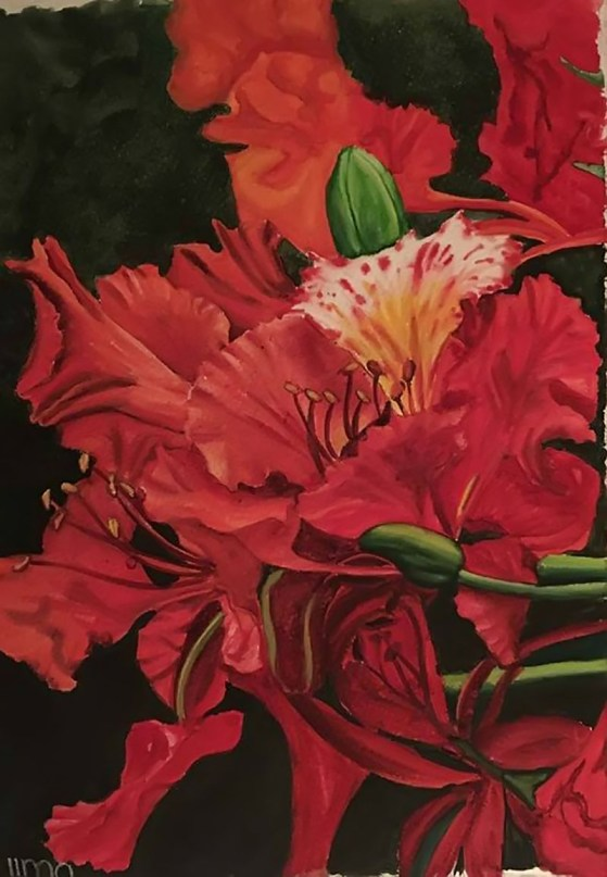 Red Flowers Watercolor Painting by Nereida Lima