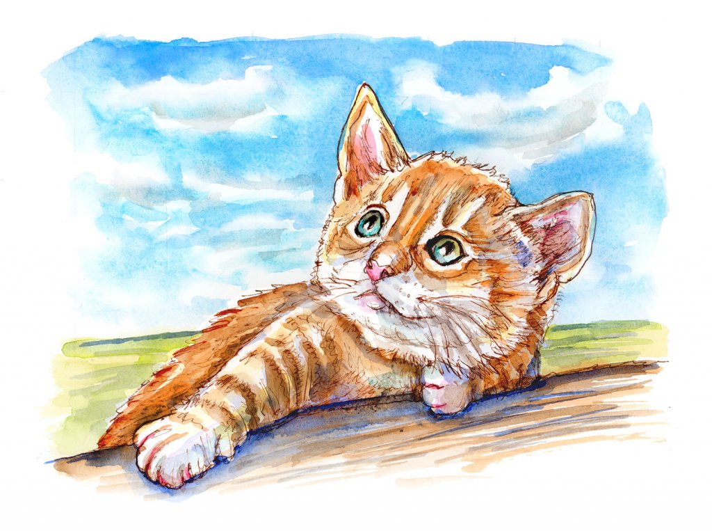 Tabby Cat Kitten Looking Up At Clouds Watercolor Painting