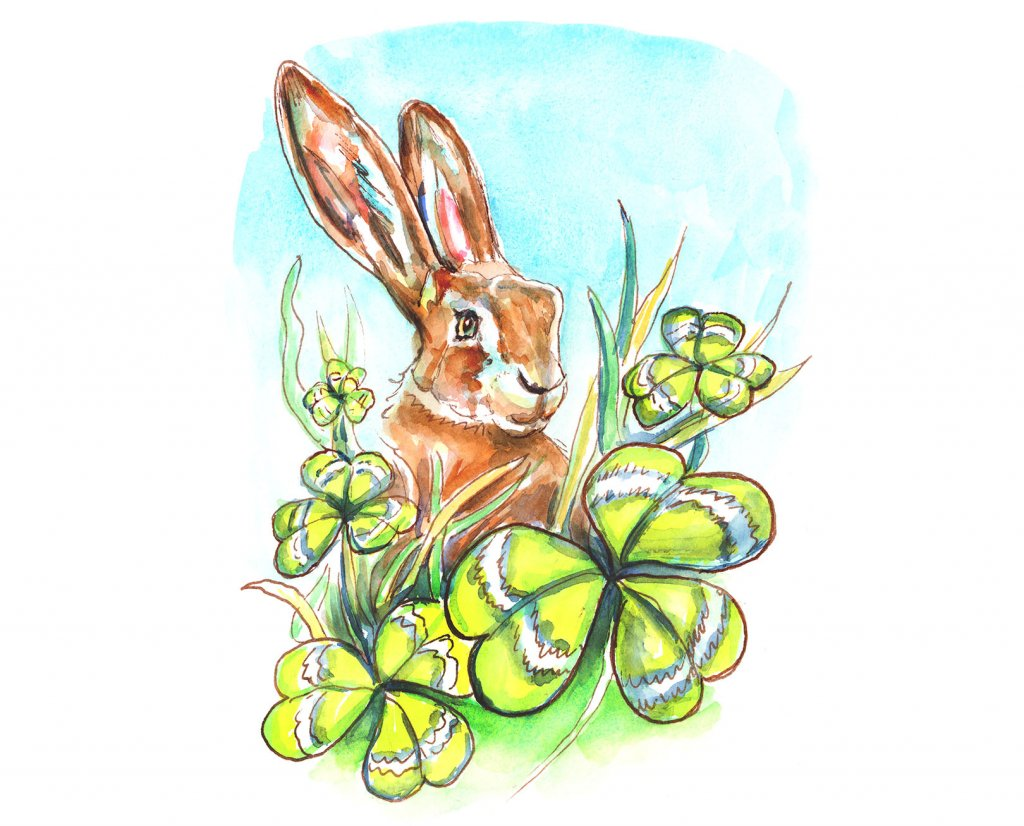 Irish Hare And Shamrocks Watercolor Painting