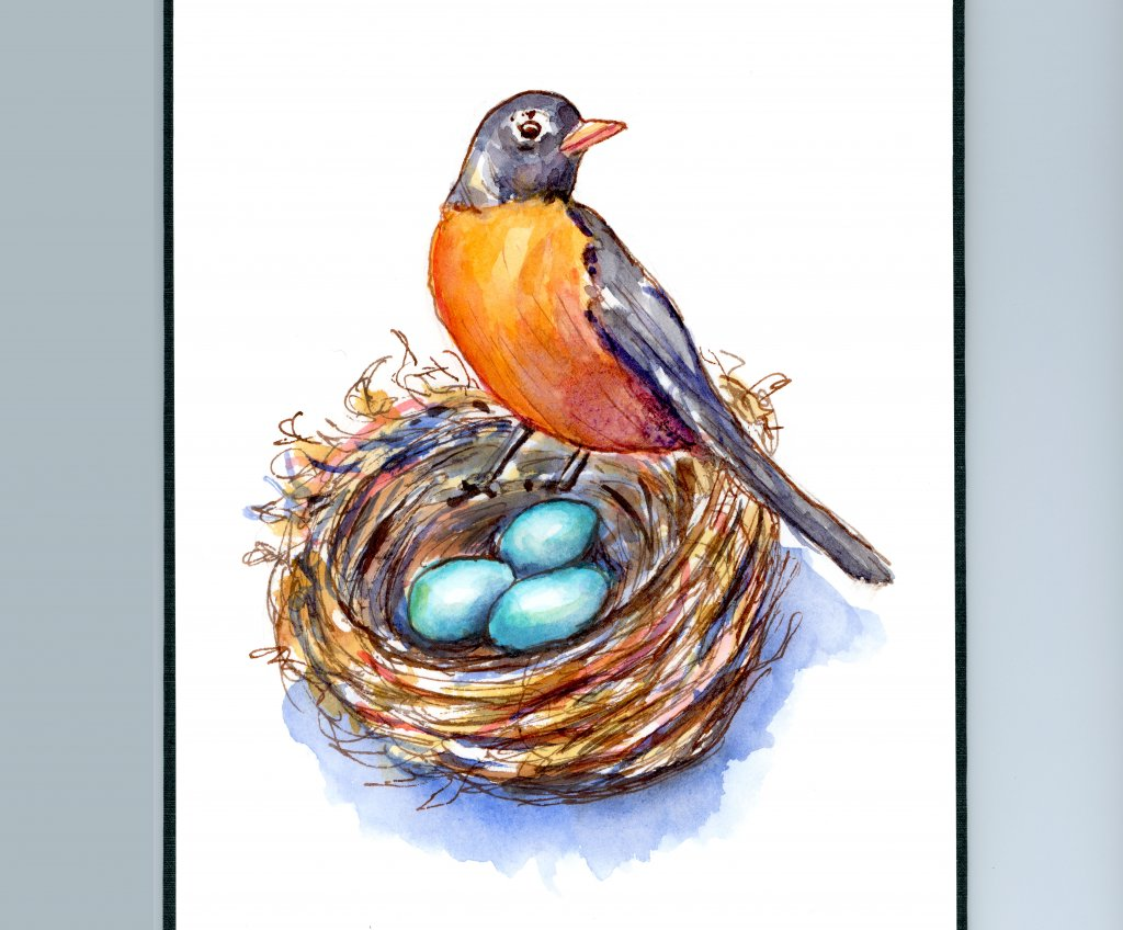 Robin And Robin's Eggs Nest Watercolor Painting Sketchbook Detail