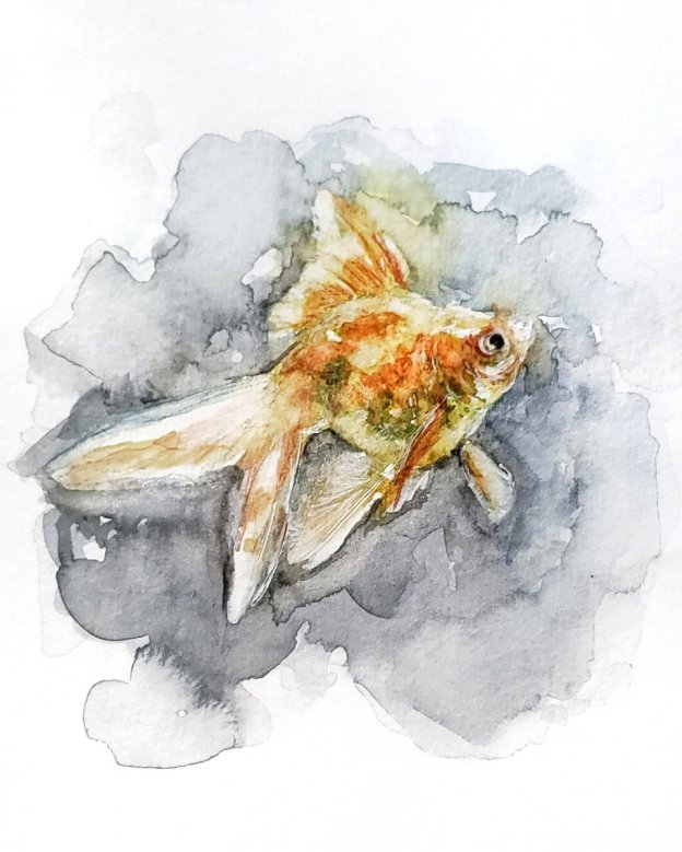 Goldfish Watercolor Painting by Jenny Tran