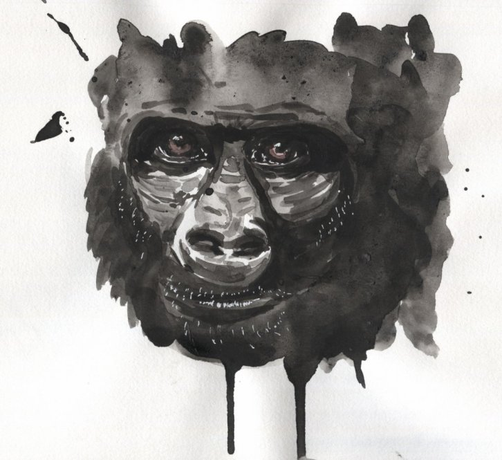 Gorilla Watercolour Painting