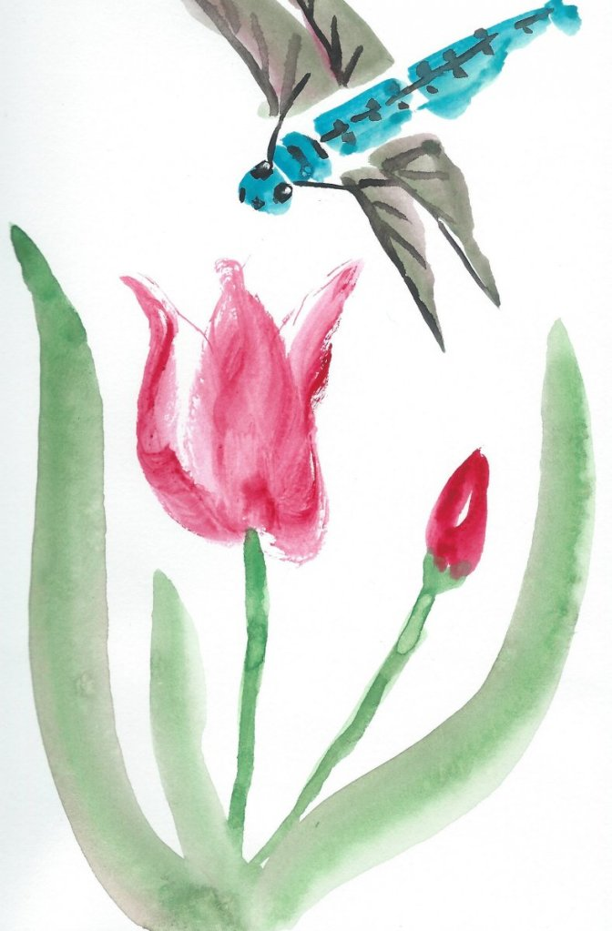 A tulip and a dragonfly Tulip and Tonbo