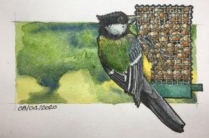 08/04/2020 Bird Feeder 6FAC4FFD-86F9-4283-B2C4-3F73413A4EC3