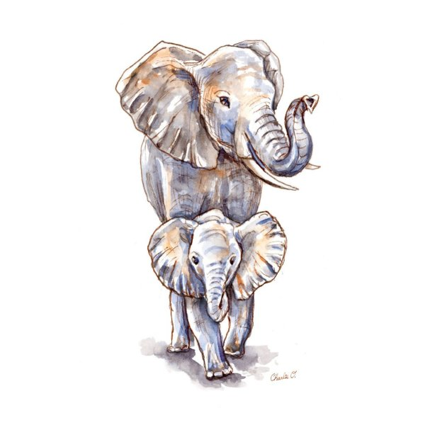Baby-Elephant-And-Mother-Watercolor-Illustration-Signed_printfile_default copy