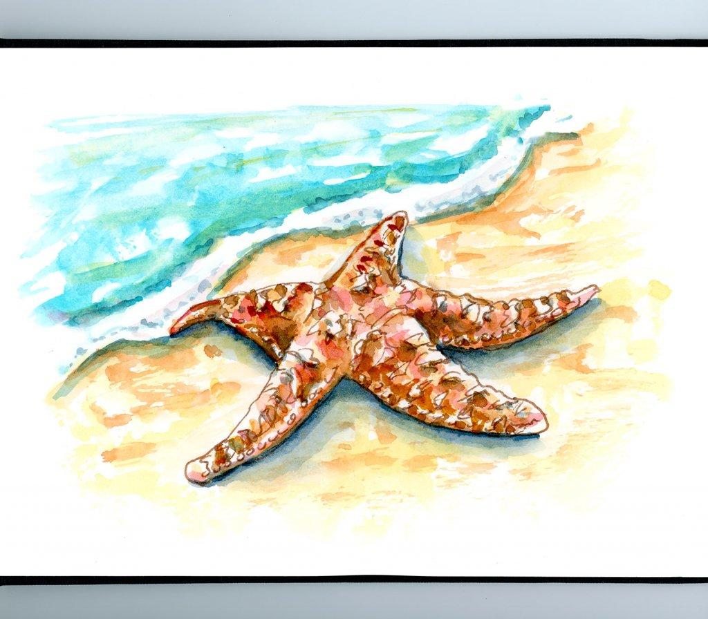 Starfish On Beach Watercolor Painting